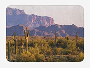 Bath Rugs for Bathroom 50x80 cm Non Slip Washable Mat Saguaro Arizona Desert Landscape with Cactus Mountain in Spring Even...