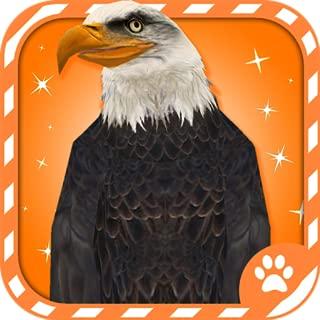 Virtual Pet Bald Eagle