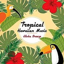 Tropical Hawaiian Music: Aloha Breeze - Hula Dancing, Summer Island, Sunset Dreams, Cheerful, Joyful & Ukulele Sounds