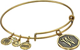 Alex and Ani Initial W Charm Bangle