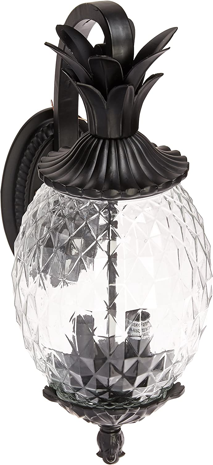 Acclaim 7502BK Lanai Collection 2-Light Outdoor Wall Indianapolis Mall Light Mount Save money