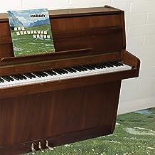Sophtware Slump ..... On A Wooden Piano