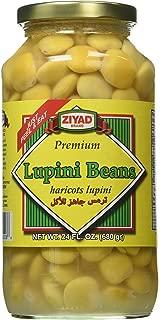 Lupini Beans (ziyad) 24 fl.oz. JAR