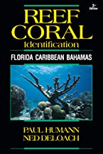 Reef Coral Identification: Florida, Caribbean, Bahamas 3rd Edition (Reef Set (New World))