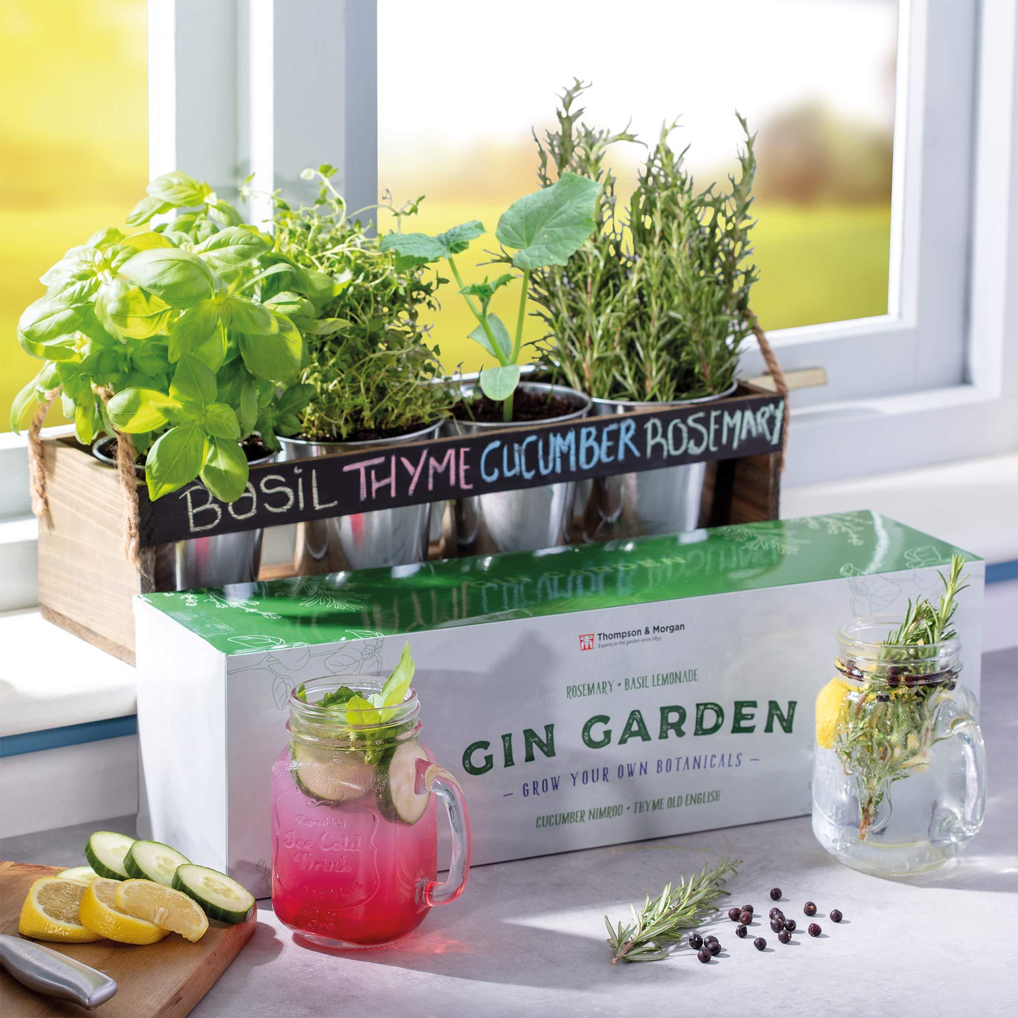 THOMPSON & MORGAN Gin jardín Tablero de Tiza de la Hierba de ...