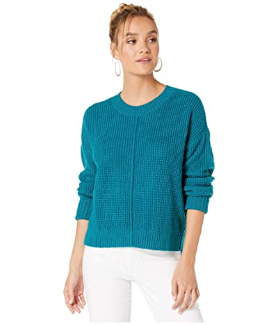 Sanctuary Sorry Not Sorry Sweater (Apatite) Women