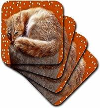 3dRose CST_15725_1 Cat F-Soft Coasters, Set of 4