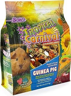 timothy pellets guinea pigs
