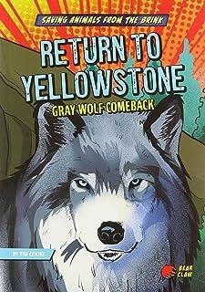 Return to Yellowstone: Gray Wolf Comeback