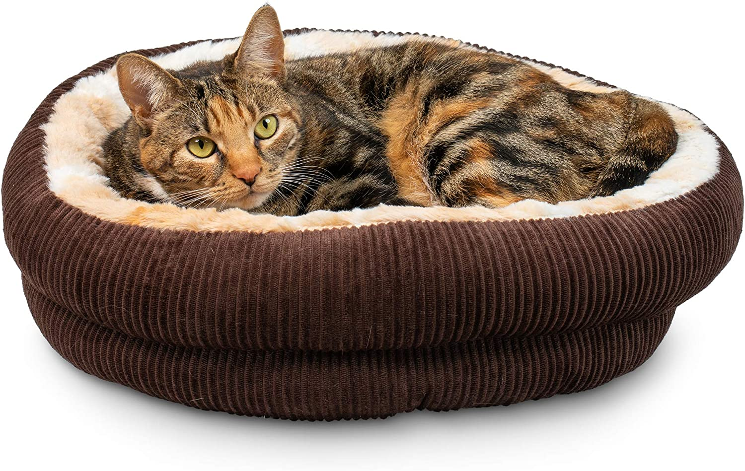 13 Must-Have Items For Cool Cats