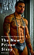 The New Prison Sissy: An Intense Gay Erotica Story
