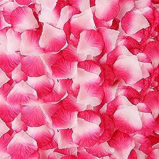 BESKIT 3000 Pieces Silk Rose Petals Artificial Flower Petals for Valentine Day Wedding Flower Decoration (Purplish Red&White)