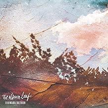 the album leaf forward return