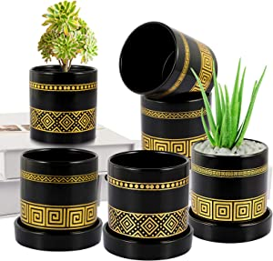 BUYMAX Succulent Plant Pots – 3.1 in Ceramic Flower Pot with Ceramic Tray and Drainage Hole for Plants Succulent Cactus House Office Decor- 6 Pack (Plant NOT Included) - Gold