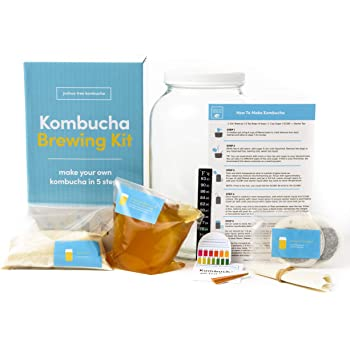Joshua Tree Kombucha Complete Starter Kit – Kombucha SCOBY with Strong Starter Tea, 1 Gallon Glass Fermenting Jar, Cloth Cover, Temperature Strip, pH Test Strips, Step-by-Step Brewing Instructions