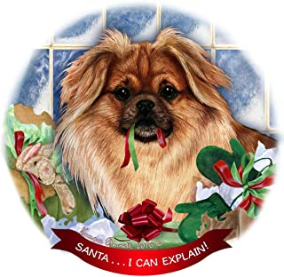 Fawn Tibetan Spaniel Dog Porcelain Hanging Ornament Pet Gift 'Santa.. I Can Explain!' for Christmas Tree and Year Round