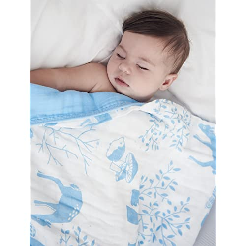 Organic Muslin Baby Toddler Blanket - 100% Hypoallergenic Cotton Bed Blankets - Blue Forest by Clover & Sage