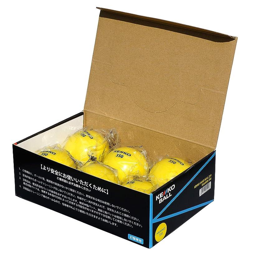 侵入する芝生フォークナガセケンコー トレーニングボール ケンコーサンドボール 350 6個 KSANDB-350-6