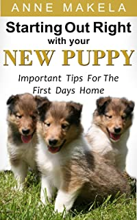 Starting Out Right With Your New Puppy: Important Tips For The First Days Home
