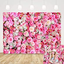 7x7FT Vinyl Wall Photography Backdrop,Reptile,Funny Dragon Sunny Weather Background for Baby Shower Bridal Wedding Studio Photography Pictures
