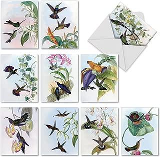 watercolor birds note cards
