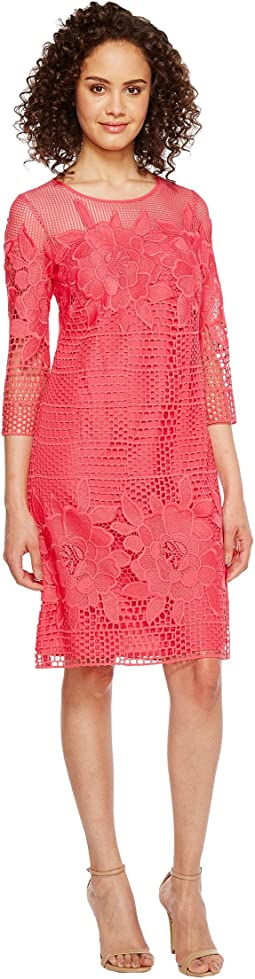 Havana Gardens Lace Long Sleeve Shift Dress