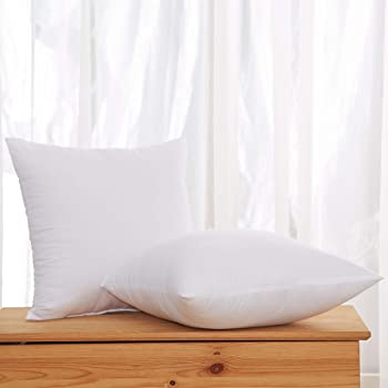 Acanva Decorative Square Throw Pillow Inserts Hypoallergenic Form Stuffer Cushion Sham Filler, 20x20, White 2 Count