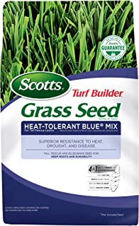 texas bluegrass seed for sale