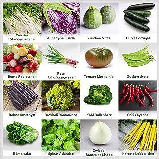 Gartengemüse Pflanzen Samen Set | Saatgut und Anzuchtset mit 16 Gemüse Sorten und 445 Pflanzensamen aus Portugal | 100% Natur Saat Keine Chemie/künstliche Wachstums-Helfer