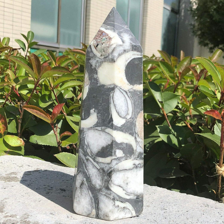 1781g Long-awaited Natural Tampa Mall Shell Jasper Stone Crystal Obelisk Polished Healin