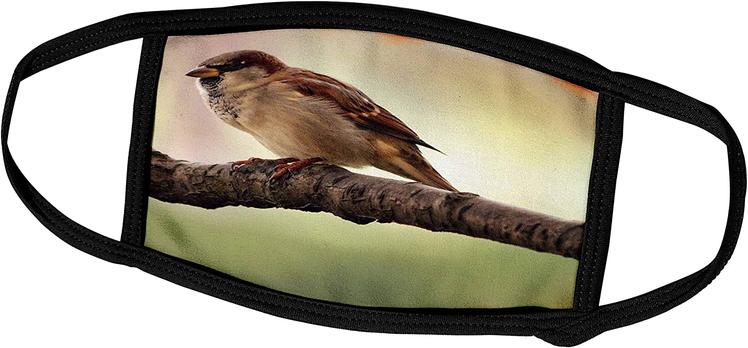 Fashion Dust Face Protection for Adult Ps Photography Bird On A Branch Animals Photography Reusable Washable Mouth Warm Windproof Half Face for Outdoor