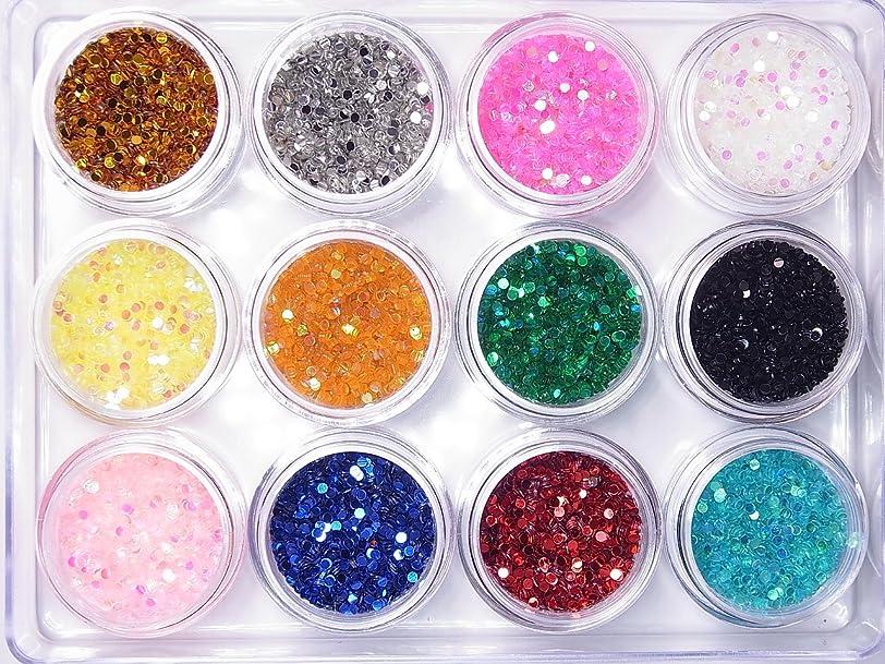 途方もないバーチャルちょうつがい【jewel】丸ホログラム1.5mm 各色たっぷり2g入り 12色SET ジェルネイル デコ