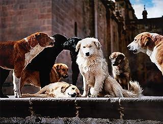 Arte del Cane Per Gli Amanti Dei Cani, Poster Stampe su Tela di Varie Dimensioni, Arte Della Parete del Cane Regali Per Gl...