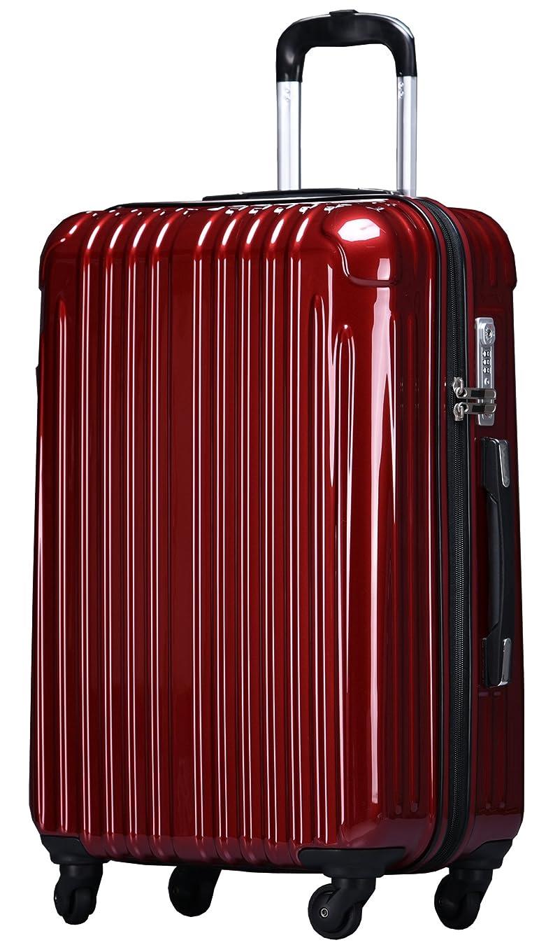 見ましたスカープ富ラッキーパンダ スーツケース TY001 ハード 超軽量 TSAロック ファスナータイプ 機内持込