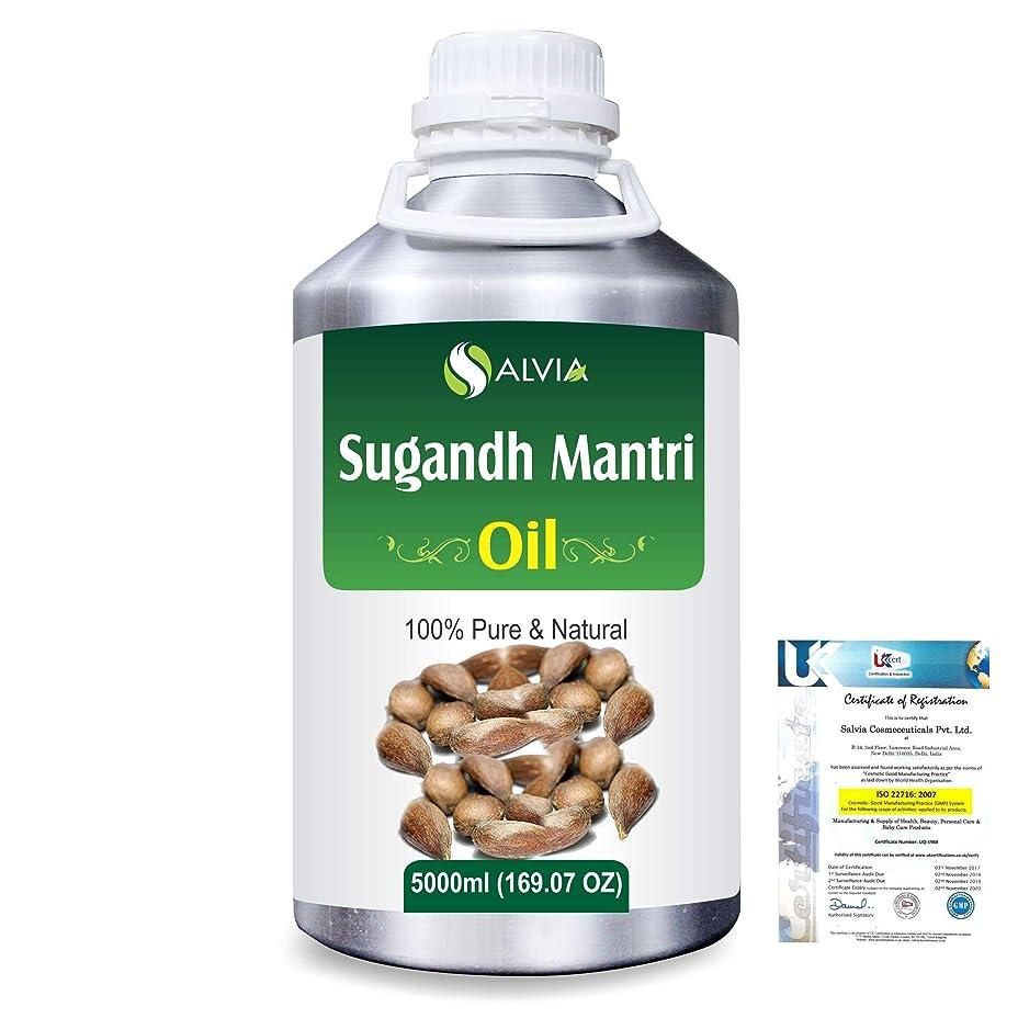 捕虜パッド特にSugandh Mantri (Homalomena aromatic) 100% Natural Pure Essential Oil 5000ml/169fl.oz.