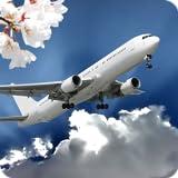 Sakura Flight さくらのフライト