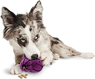 Busy Buddy Barnacle Treat Dispensing Dog Toy