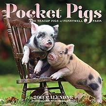 Pocket Pigs 2013 Wall Calendar: The Teacup Pigs of Pennywell Farm