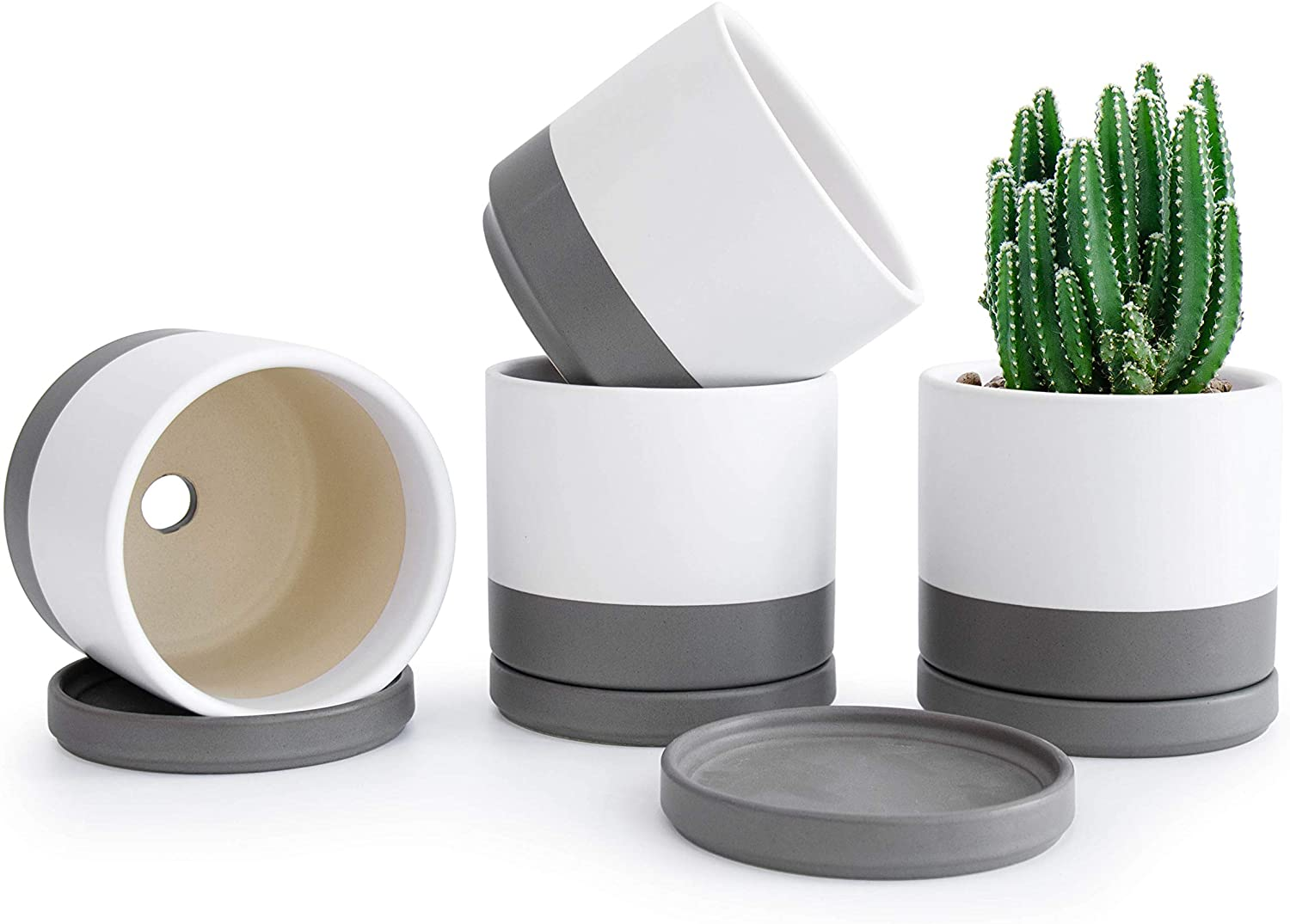 Set of 4 Choice Small Succulent Plant Planter Ceramic Bombing free shipping 4.3 Inch Po Pots