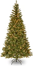 National Tree 7 Foot Aspen Spruce Tree with 400 Clear Lights, Hinged (AP7-300-70)