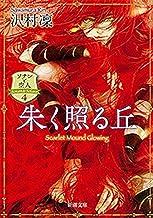 表紙: 朱く照る丘―ソナンと空人4―(新潮文庫) | 沢村凜