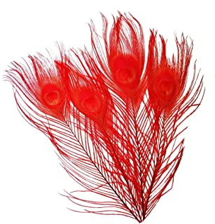 20pcs Peacock Tail Feathers Bleached Dyeing Peacock Feathers for DIY Craft Home Party Decoration 9-12inch/25-30cm (Red)