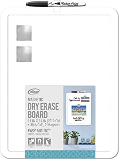 Board Dudes 11