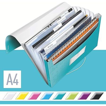 LEITZ ライツ ファイルケース ワオ プロジェクトファイル A4 アイスブルー 4589-00-51