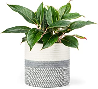 Dahey Cotton Rope Plant Basket Small Woven Storage Basket for Up to 7