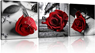 NAN Wind Canvas Print 3 Pcs Black and White Red Rose Canvas Art Painting Abstract Wall..