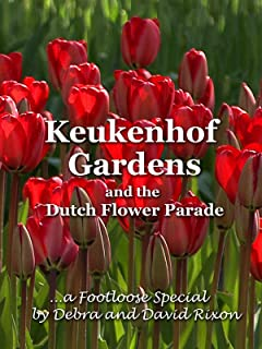 Best dutch spring flower Reviews