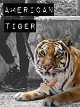 American Tiger
