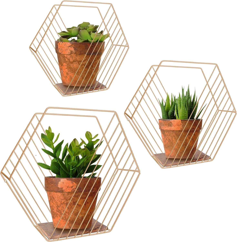 Octagon Shelves, Farmhouse Storage Shelves for Wall, Hexagon Floating Shelves, Bedroom, Living Room, Bathroom, and Kitchen, Gold Shelf