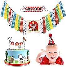 Best farm animal 1st birthday party ideas Reviews